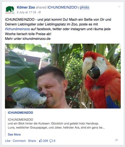 Koelner Zoo Social Media Beitrag