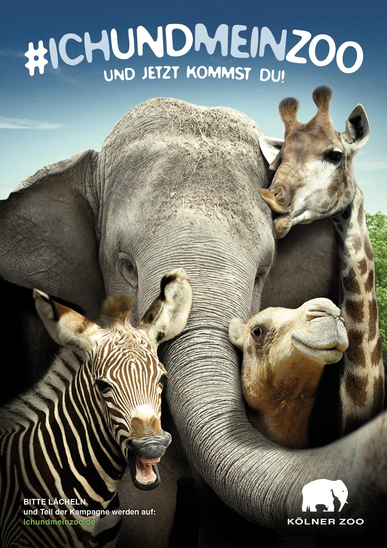 Koelner Zoo Kampagne Tierselfies Motiv Elefant