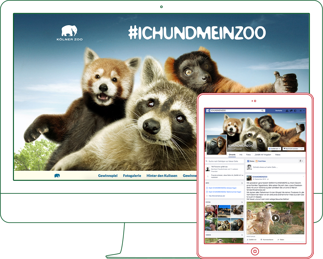 Koelner Zoo Tierselfies Website Bundle