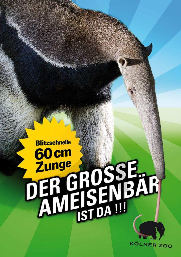60 cm Zunge - Der grosse Ameisenbär ist da!