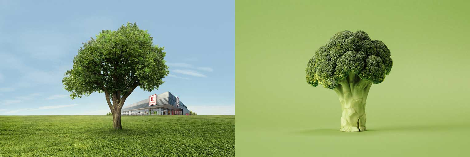 Splitscreen - Baum Brokkoli